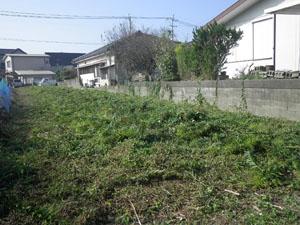 鹿児島市 草刈り後2