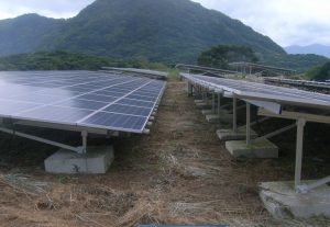 太陽光発電 雑草処理後2