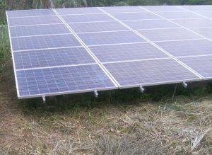 太陽光発電 雑草処理後4