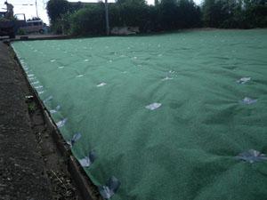 草刈り作業後 防草シート施工事3