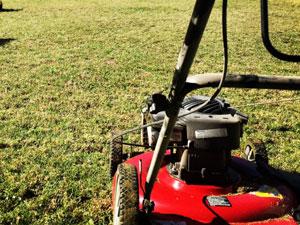 芝刈りで使用する道具について