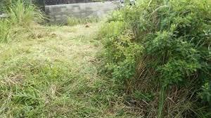 草刈り 垂水