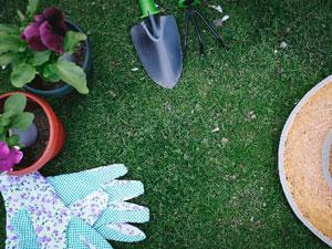 ガーデニングの雑草について