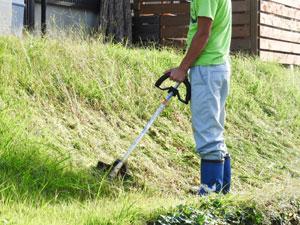 除草の他、刈った後に除虫防虫処理なども