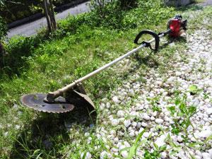 毎年必ず1年に2回は草刈りをしておく