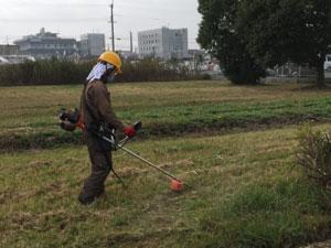 空き地の雑草処理方法