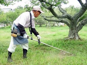 梅雨明け 鹿児島 大規模 草刈り 除草工事