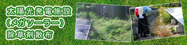 太陽光発電施設(メガソーラー) 除草剤散布