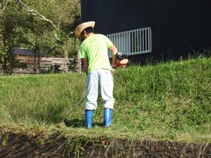 外国人の方からの鹿児島での草刈り依頼も歓迎です!