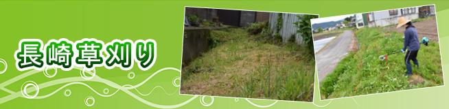 長崎草刈り