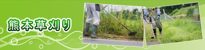 熊本草刈り