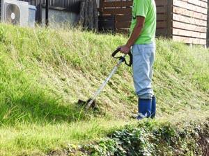 草刈りのトレンド