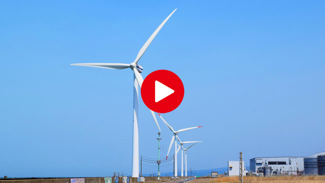 風力発電所周辺の雑草対策